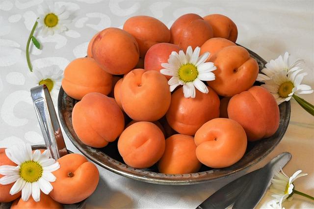 10 bienfaits de l'abricot